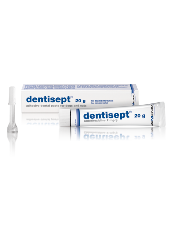 Dentisept - 20ml