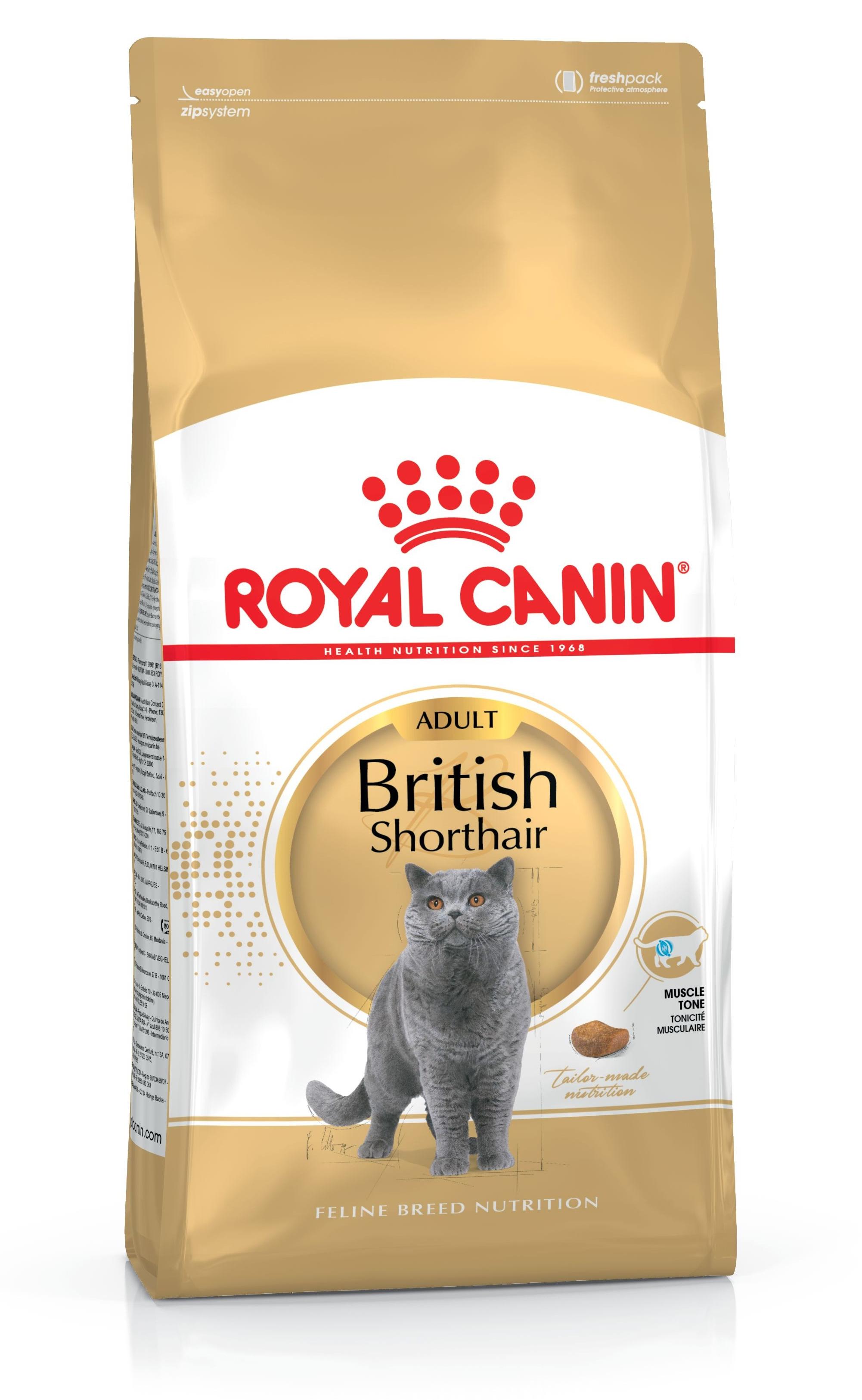 royal canin british shorthair 4kg feline breed. Black Bedroom Furniture Sets. Home Design Ideas