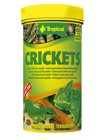 Tropical Crickets - 25g/250ml